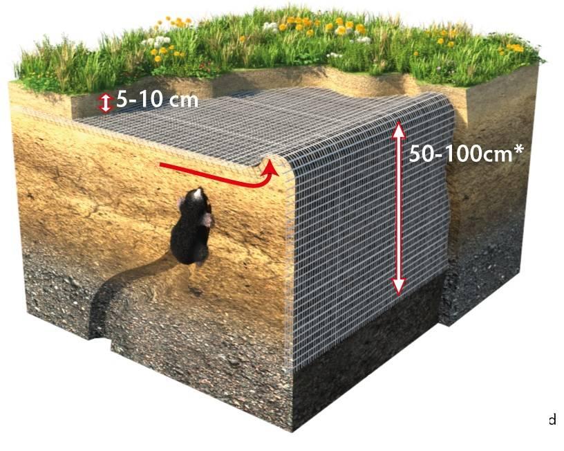 Mollenbarriere 400 G/M2 | L = 25 m B = 100 cm
