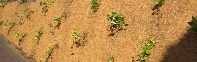 DuPont Plantex Cocomat worteldoek | L = 22,5 m B = 240 cm