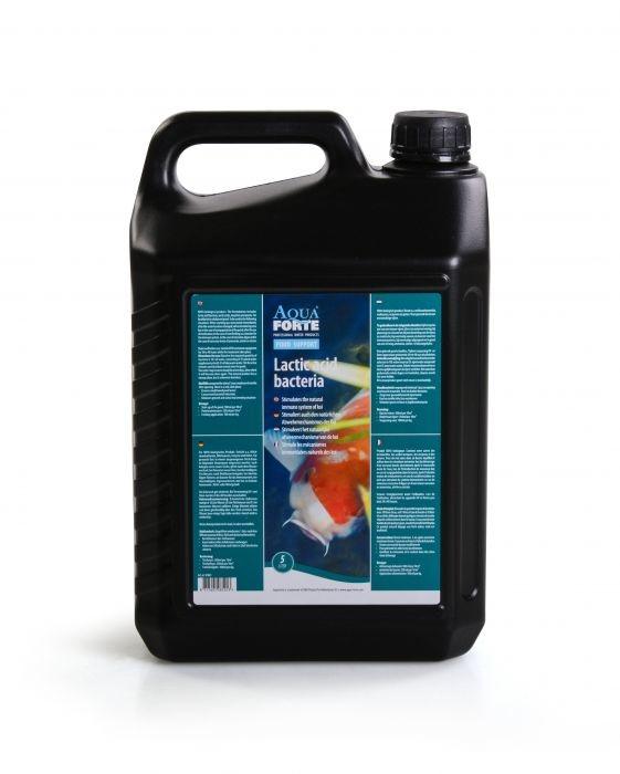AquaForte melkzuurhoudende bacteriën 5 L